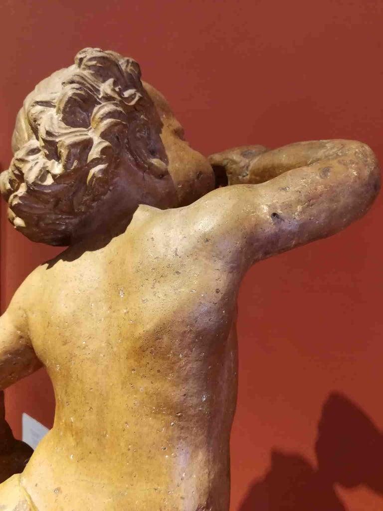 Florentine artist After Verrocchio, Putto, 17th, terracotta For Sale 4
