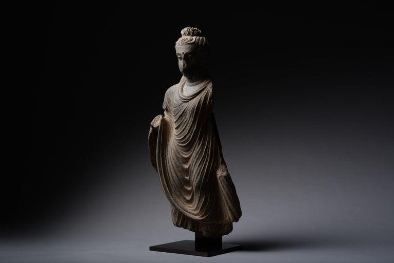 Gandharan Schist Statue of Buddha - Black Figurative Sculpture by Unknown