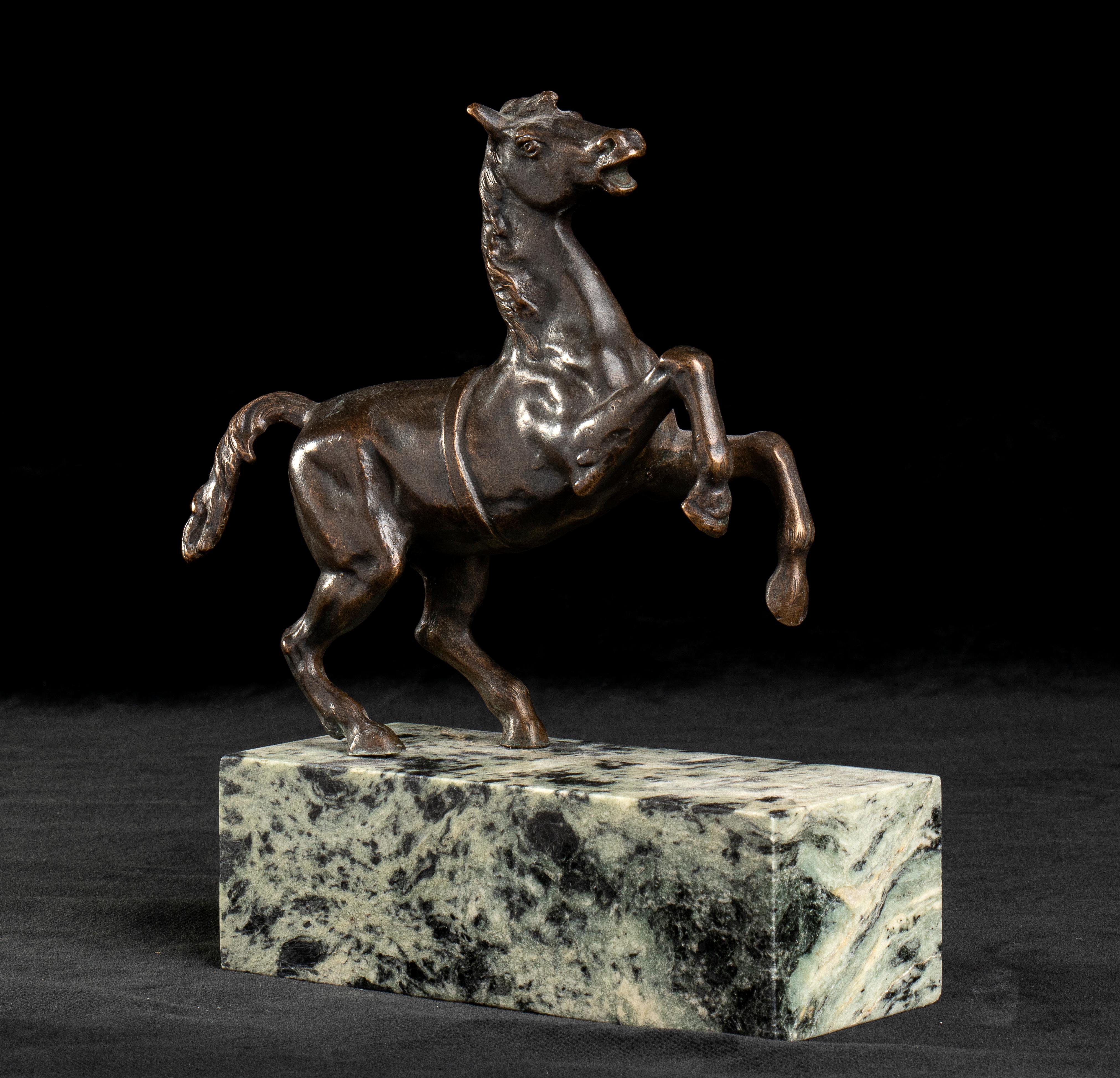 Grand Tour Bronze Sculpture of Rampant Horse Standing on Specimen Marble Base