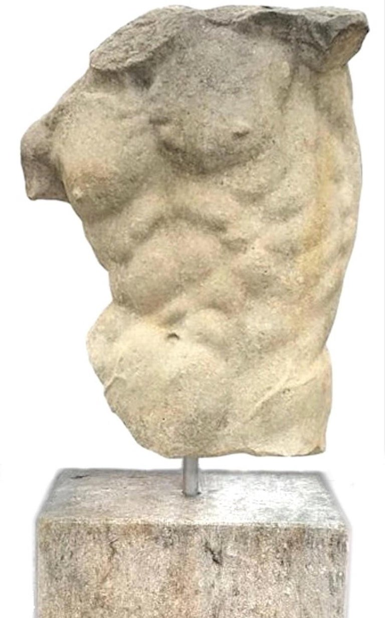Unknown Figurative Sculpture - Italian Stone Sculpture of Classical Torso with Base