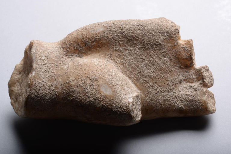 Roman Marble Fragment of a Hand For Sale 2
