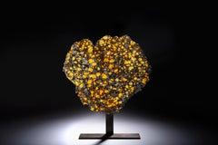 Spectacular Meteorite Specimen
