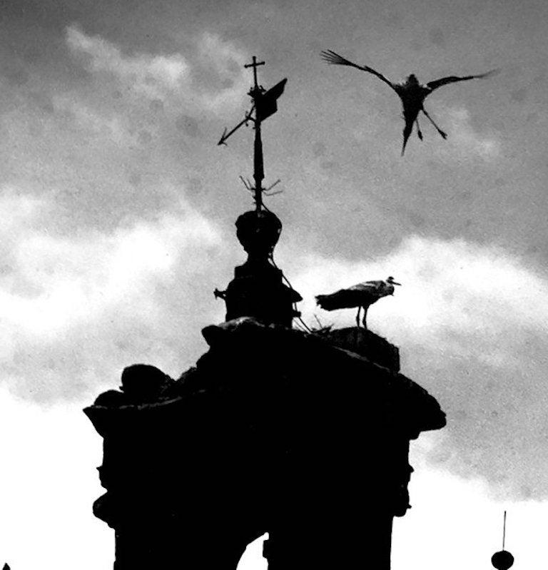 Other Untitled 'Church Spire, Seville', Silver Gelatin Print, circa 1930 For Sale