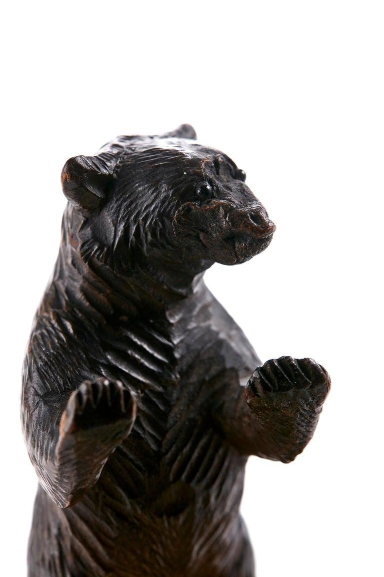 Unusual Carved Black Forest Bear Match Box Striker For Sale 1