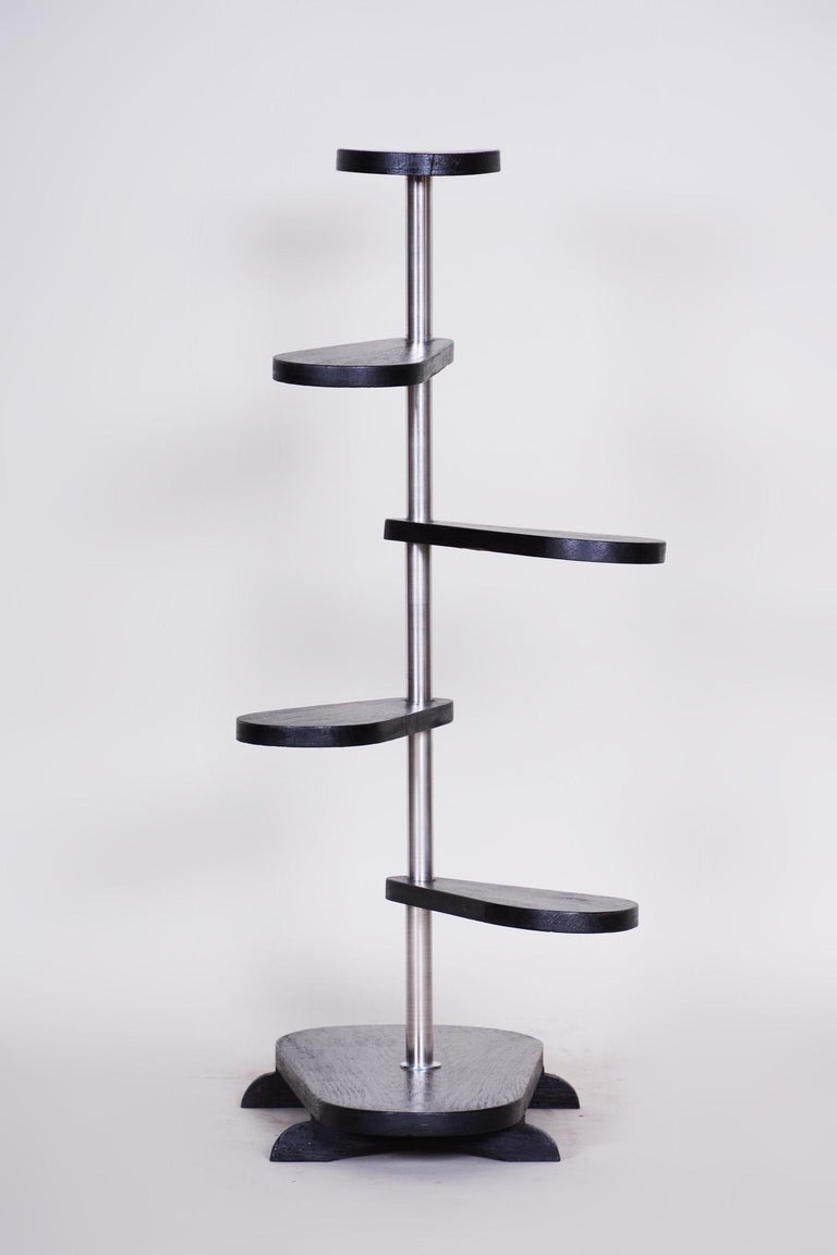 20th Century Unusual Czech Black Oak Bauhaus Style Chrome Étagère, Flower Stand, 1930s For Sale