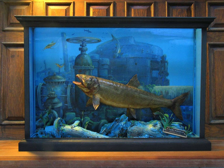Hand-Crafted Unusual Fish Taxidermy Diorama Set in Decaying Underwater Industrial Environment For Sale