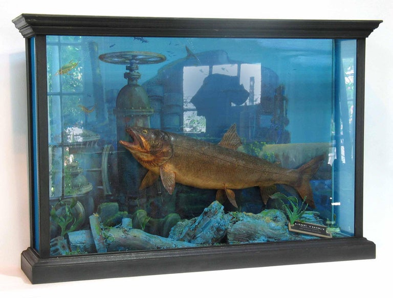 20th Century Unusual Fish Taxidermy Diorama Set in Decaying Underwater Industrial Environment For Sale