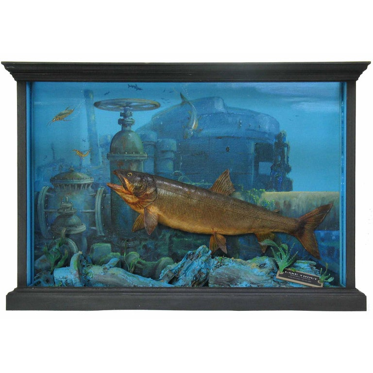 Unusual Fish Taxidermy Diorama Set in Decaying Underwater Industrial Environment For Sale