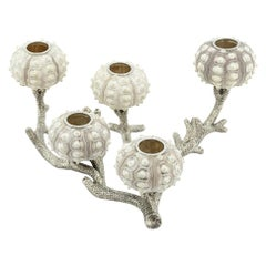 Urchins Candleholder Silver Plated