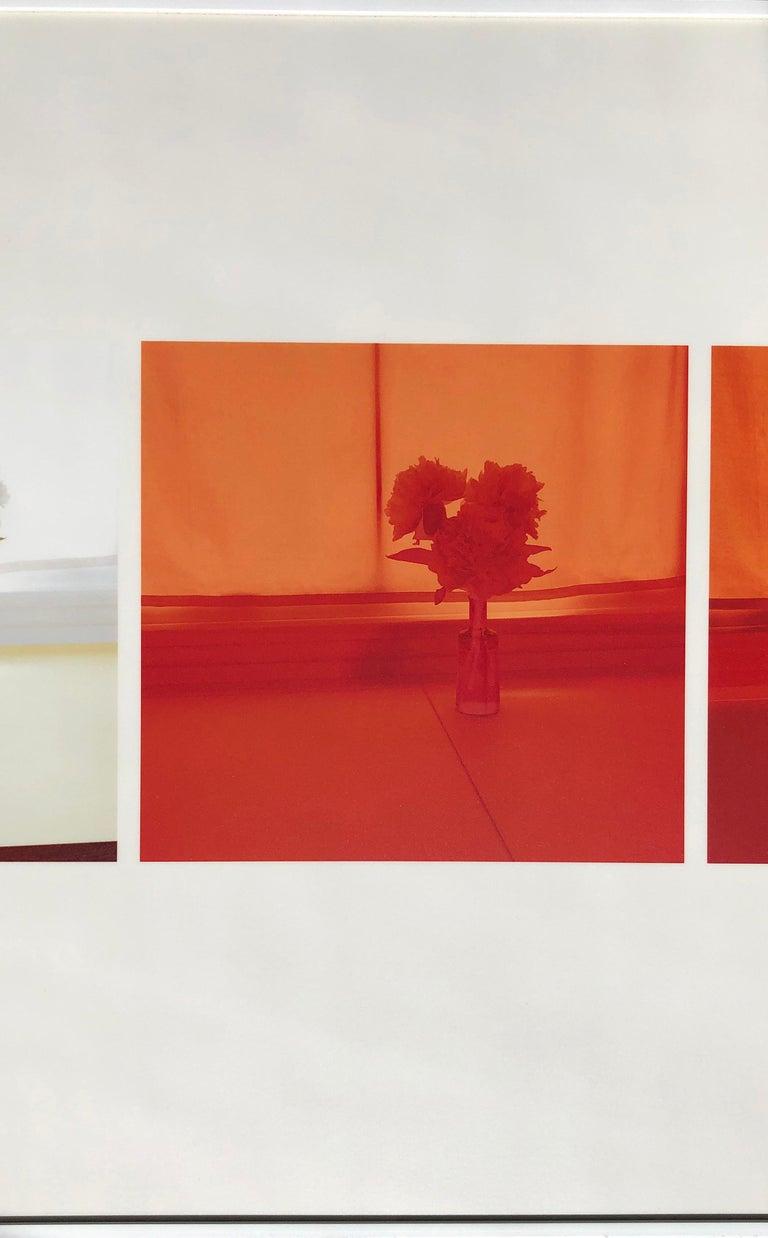 Untitled (2005.A) - Photograph by Uta Barth