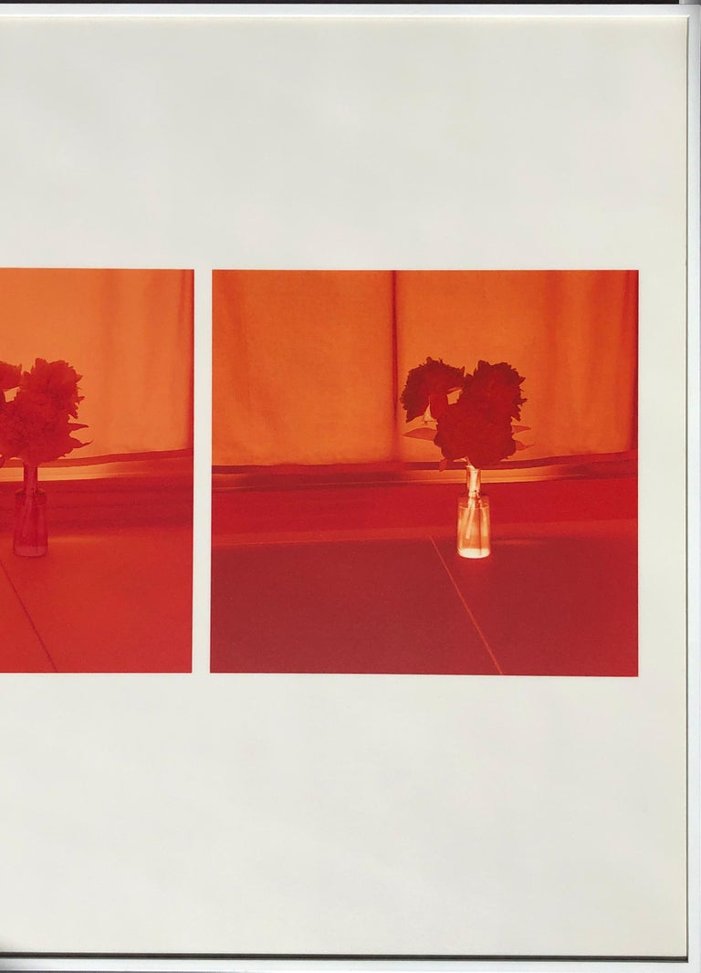 Untitled (2005.A) - Gray Color Photograph by Uta Barth