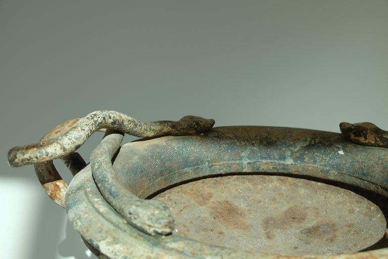 Val d'Osne Cast Iron White Snake Urns For Sale 7
