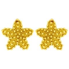 Valentin Magro 18 Karat Yellow Gold Small Starfish Shell Earrings