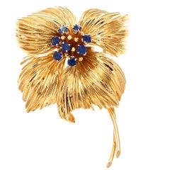 Van Cleef & Arpels Gold Sapphire Brooch