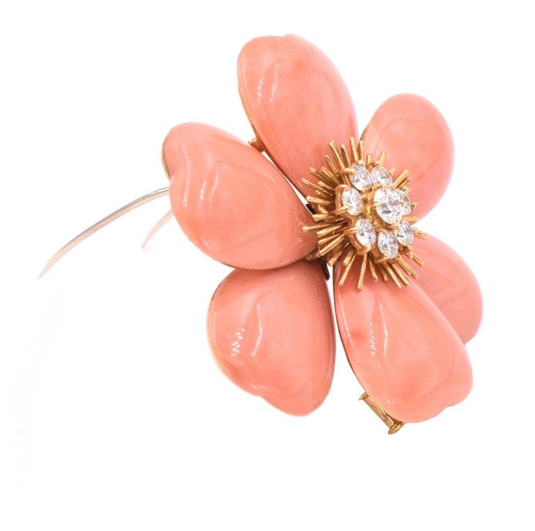 Women's or Men's Van Cleef & Arpels 'Rose de Noel' Coral Brooch For Sale