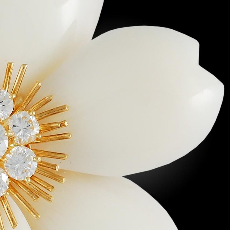 Women's or Men's Van Cleef & Arpels White Coral French Rose de Noel Brooch For Sale
