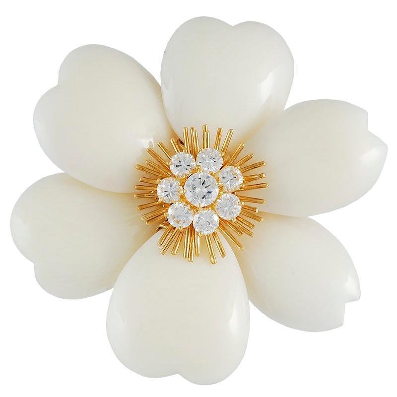 Van Cleef & Arpels Diamond White Coral Yellow Gold Rose de Noël Brooch