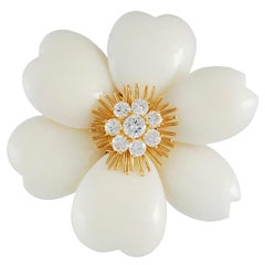 Van Cleef & Arpels White Coral French Rose de Noel Brooch