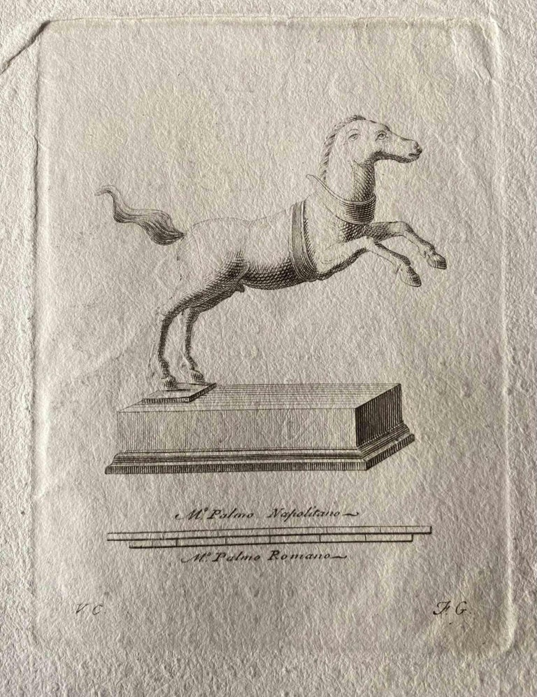 Various Artists Figurative Print - Animal Figures from Ancient Rome - Original Etching by Various Masters - 1750s
