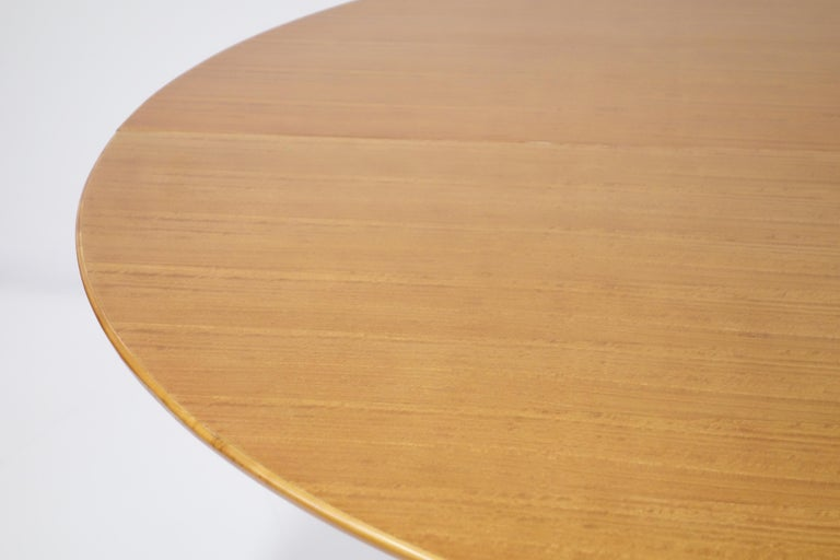 Mid-20th Century Varnished Lemon-Tree Circular Table by Jean Royère, circa 1950 For Sale
