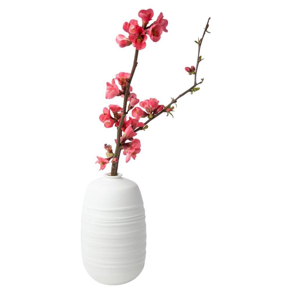 Vase Soliflore Horizon - Set