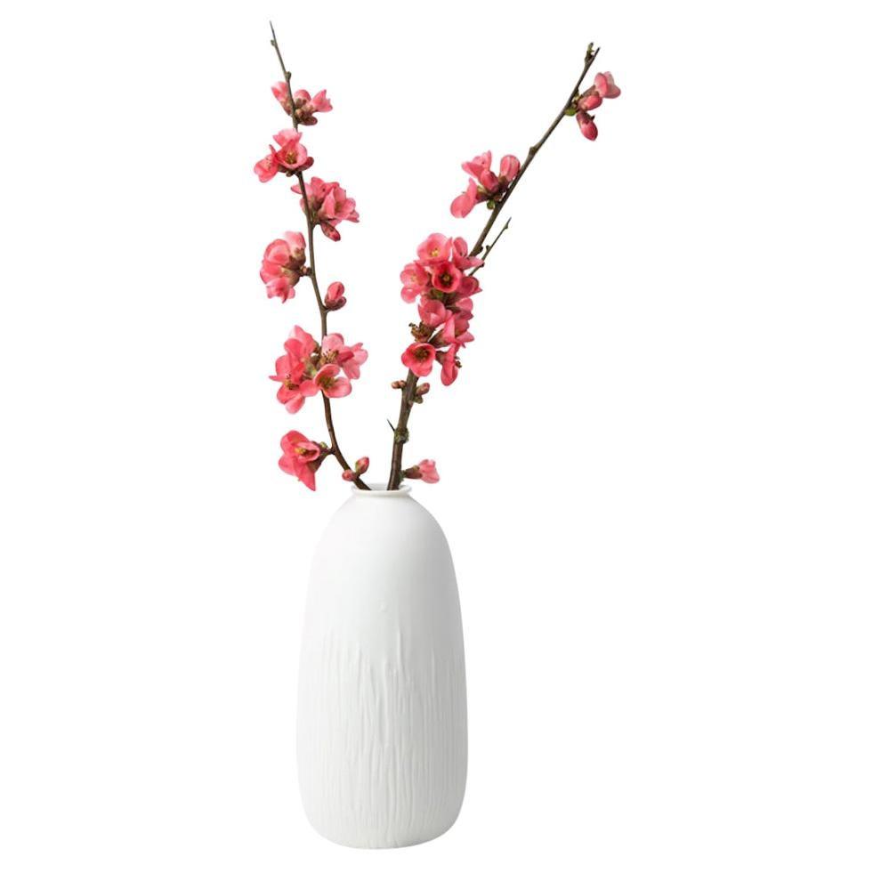 Vase Soliflore Ligne, Set