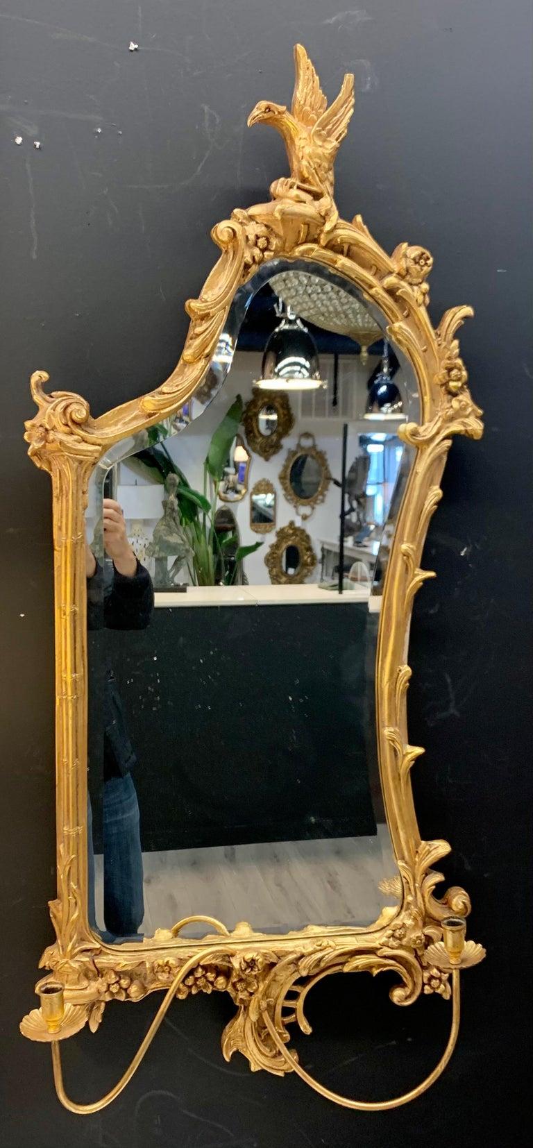 Italian Venetian Early 20th Century Rococo Sculptural Carved Gilt Wood Mirror