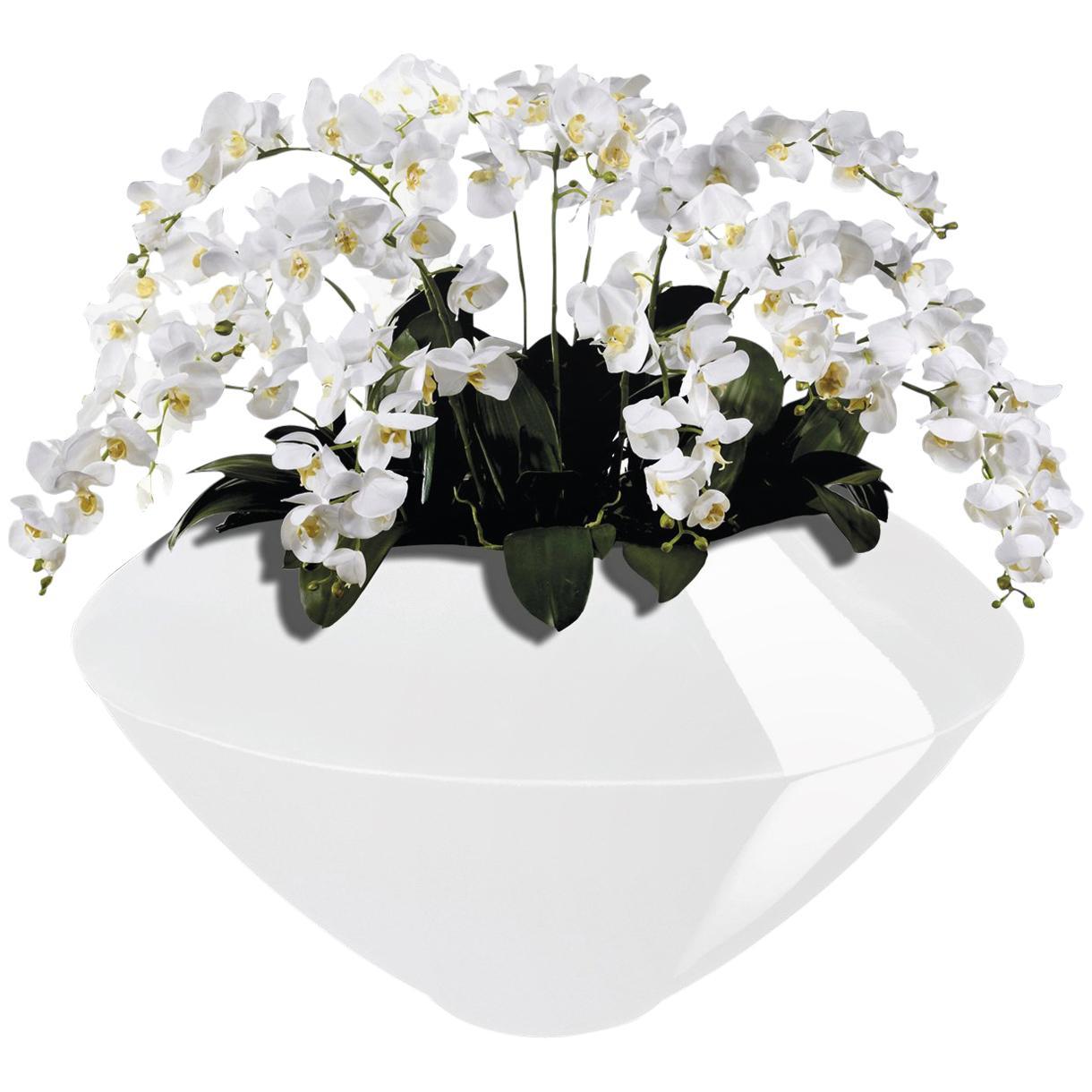 225 & Venice Set Arrangement Flowers Vase Indoor Use Italy