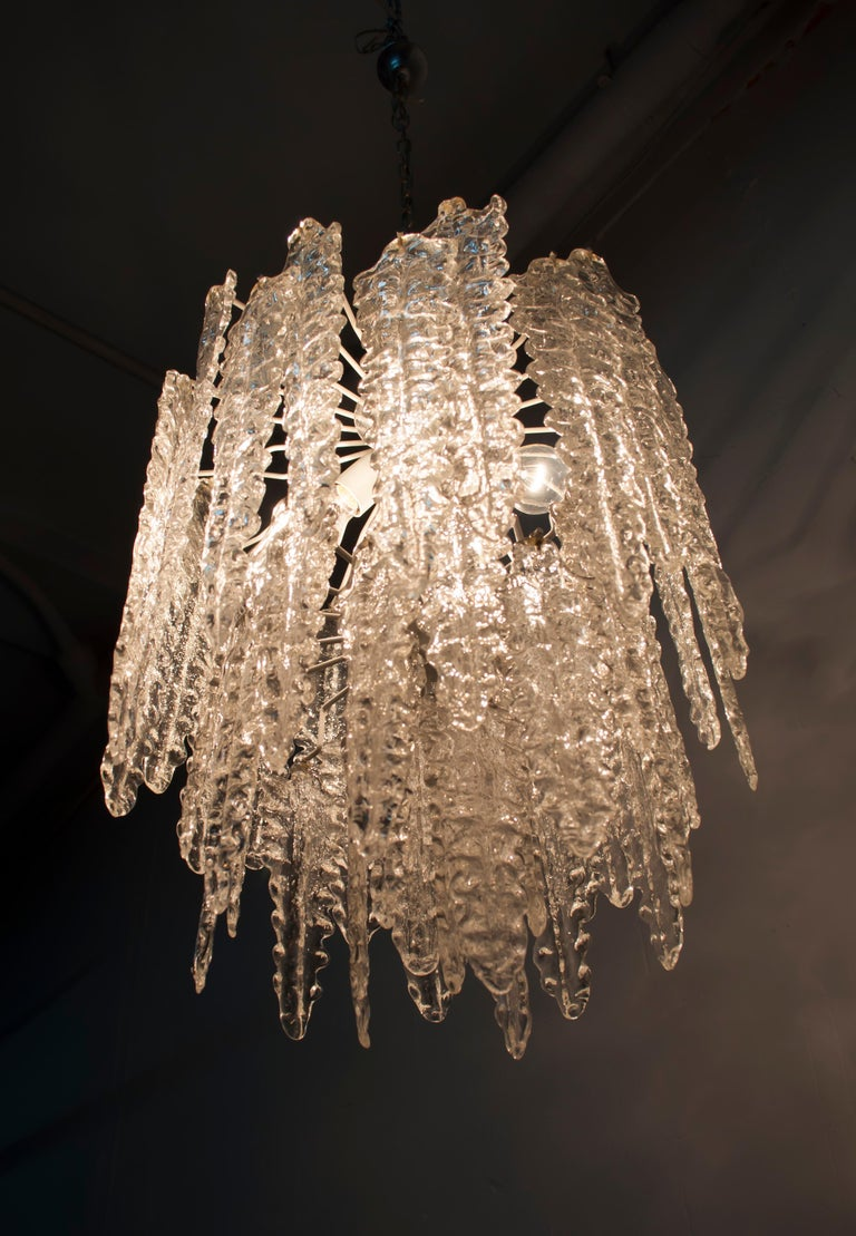 This Algae model chandelier was produced by Venini in the 1960s. The structure is in metal with elements in colorless Murano glass.  Paolo Venini (1895-1959) emerged as one of the leading figures in the production of Murano glass and an important
