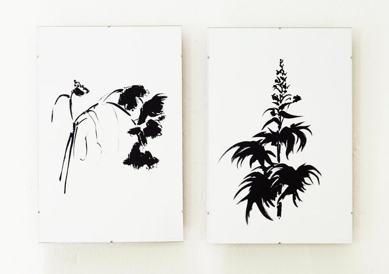 Botanical Study · Delphinium #1_Edition 1 of 10 For Sale 3