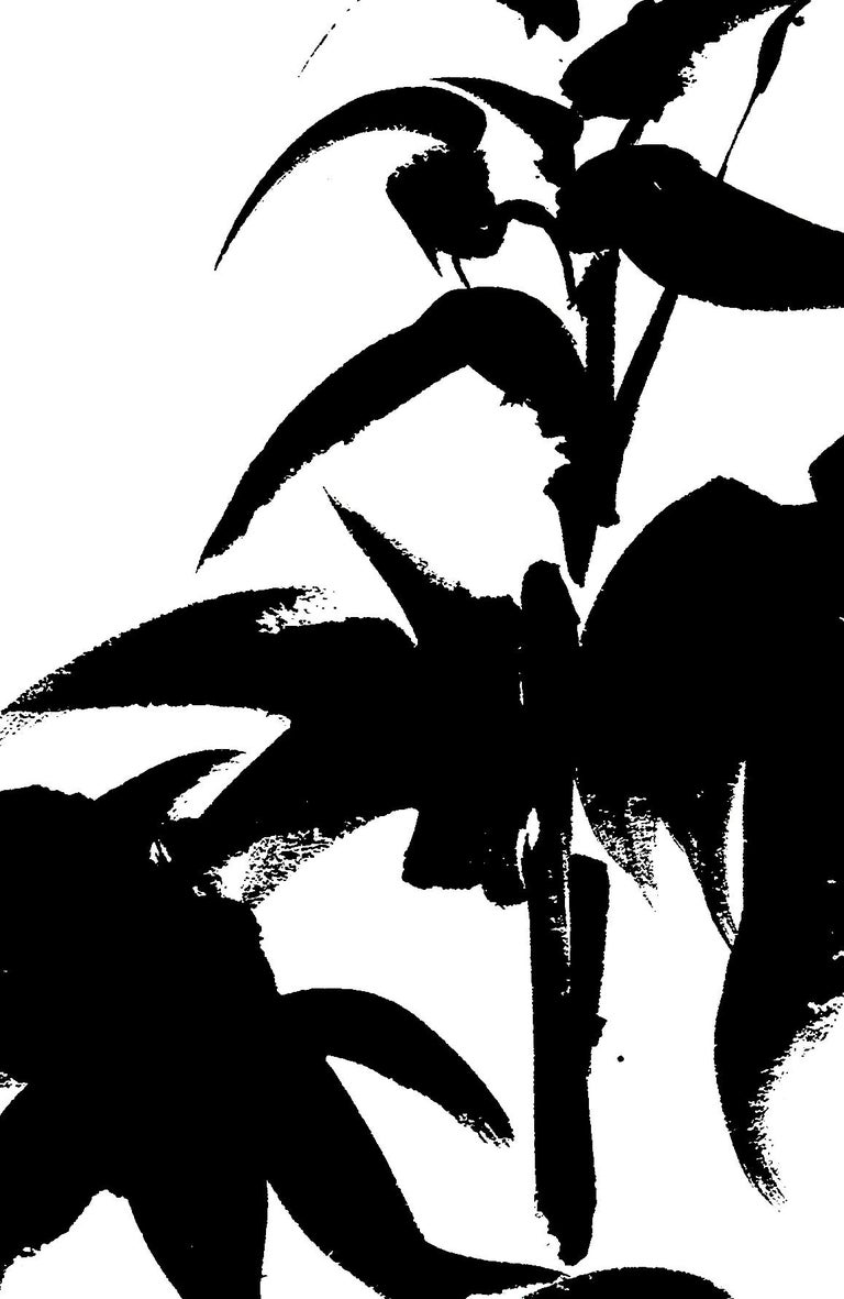 Botanical Study · Delphinium #1_Edition 1 of 10 For Sale 1