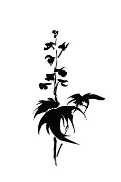 Botanical Study · Delphinium #9_Edition 1 of 10