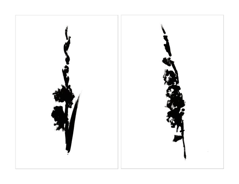 Botanical Study · Gladiolus #4_Edition 1 of 10 For Sale 2
