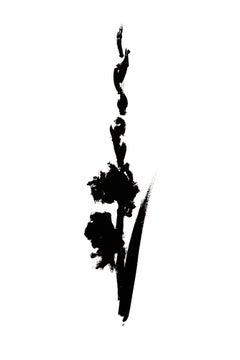 Botanical Study · Gladiolus #4_Edition 3 of 10