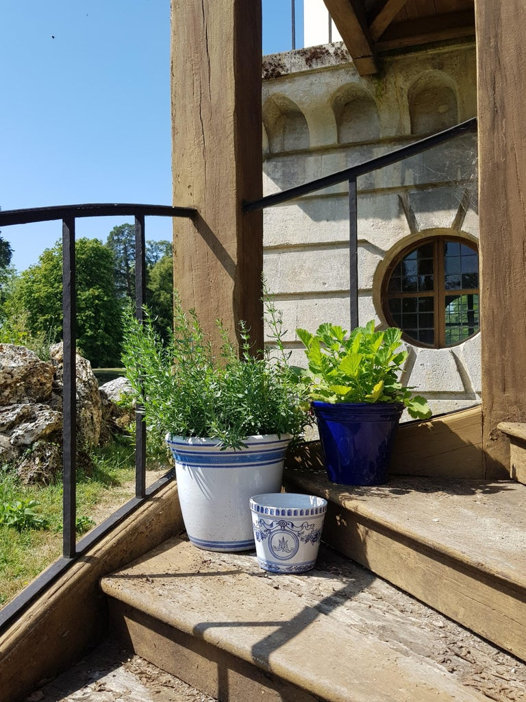 Versailles Flower Pot and Saucer In New Condition For Sale In Mareil-Marly, Yvelines