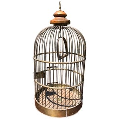 Very Large Brass Vintage Functional Bird Cage