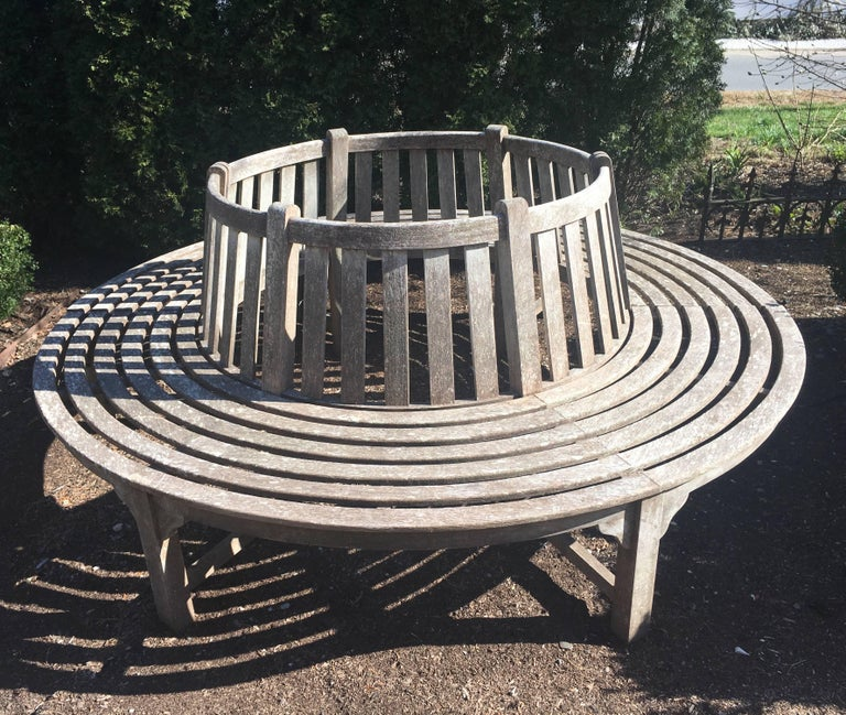 Very Large English Circular Teak Tree Bench For Sale 6