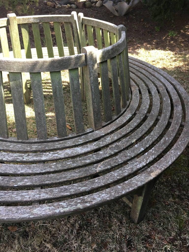 20th Century Very Large English Circular Teak Tree Bench For Sale