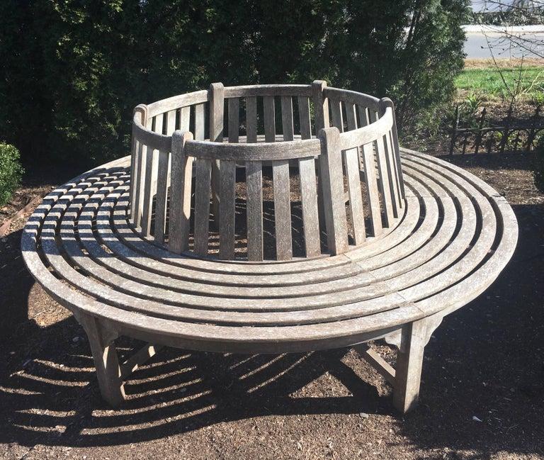Very Large English Circular Teak Tree Bench For Sale 2
