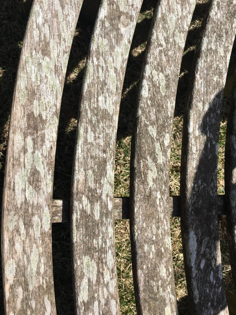 Very Large English Circular Teak Tree Bench For Sale 3