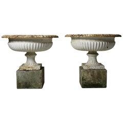 Very Large Pair of 19th Century Cast Iron Garden Urns