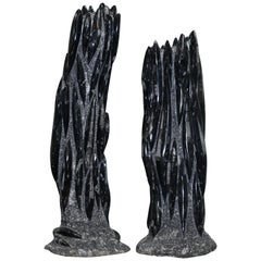 Very Large Pair of 395 Million Year Old Fossilized Orthoceras Art Statues Fossil