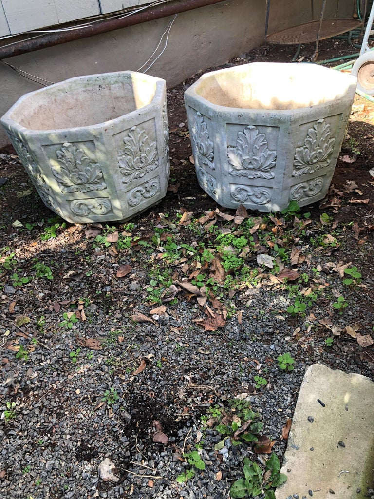 French Very Large Pair of Cast Stone Cement Octagonal Jardinières Planters Flower Pots For Sale