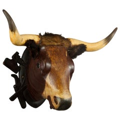 Very Large Wooden Carved Bull Head from a Butchery ca. 1880