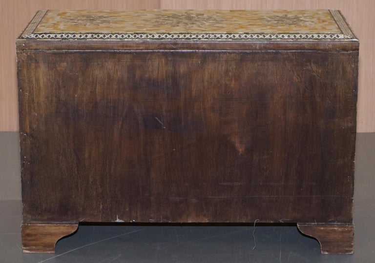 Very Rare Absolutely Sublime Mother of Pearl Chest of Trunk with Mahogany Lining For Sale 7