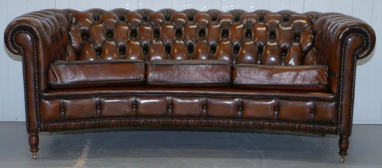 English Very Rare Curved Front Fully Restored Cigar Brown Leather Chesterfield Club Sofa For Sale