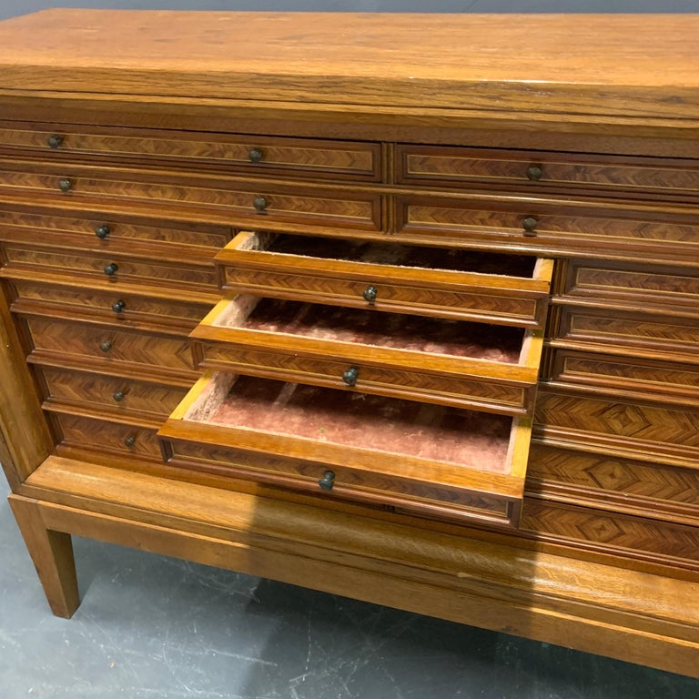 Very Rare Custom Made Collectors Cabinet For Sale 2