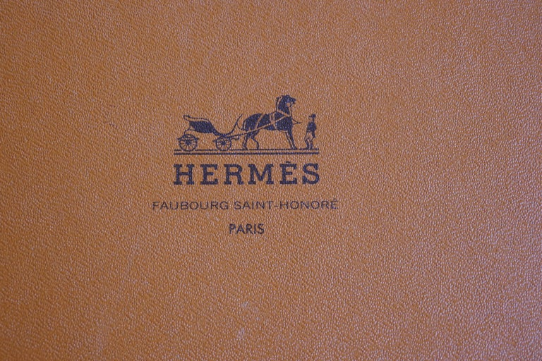"""Very Rare Hermes Silk Scarf """"Plumes de l'Ouest"""" by Kermit Oliver, 1993 For Sale 8"""