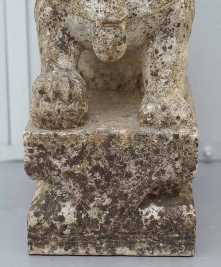 Very Rare Pair of 18th Century Chinese Marble Temple Lion Guardians Foo Dogs For Sale 7