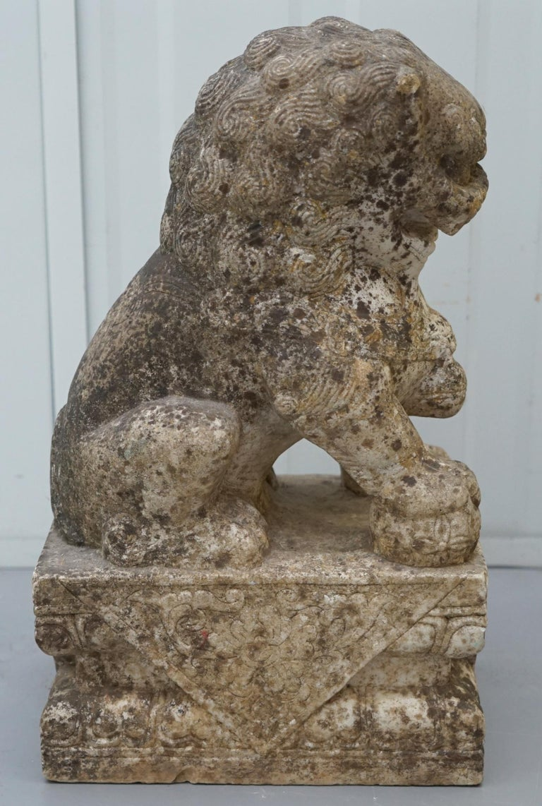 Very Rare Pair of 18th Century Chinese Marble Temple Lion Guardians Foo Dogs For Sale 8